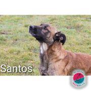 Santos- braucht eine Aufgabe