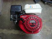 Motor Honda GX 200 6