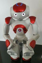 Nao Robot V5 Red - Humanoid