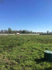 Kleiner privater Pferdestall