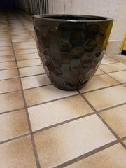 Pflanzen Vase schwarz