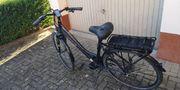 E-Bike Prophet 6 5