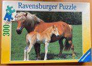 Pferdepuzzle 300 Teile