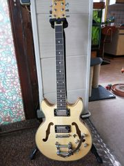 Cherry Stone Hollow Body E-Gitarre