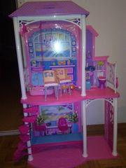 Barbie Puppen inkl Zubehör