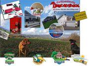 Ferienwohnung Drachenhaus Last Minute Angebot