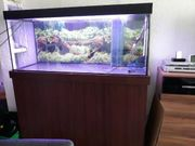 Verkaufe mein Juwel Aquarium