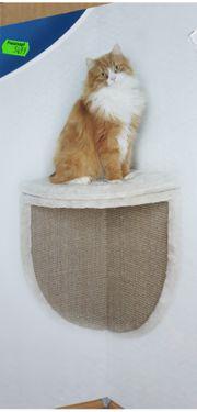 Katzenkratzecke und Sitzplatz