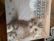 Das Tierische Tagebuch meine Katze
