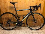 Carbon Rennrad Bergamont Prime Team