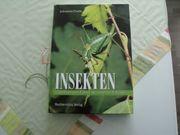 Insektenbuch