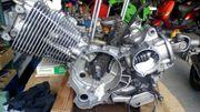 Yamaha Virago 535 XV Motor