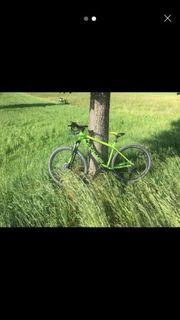 mtb fahrrad focus