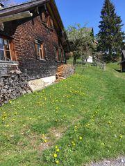 Haus Eigentumswohnung Grundstück in Lochau