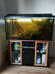 Aquarium komplett mit Unterschrank