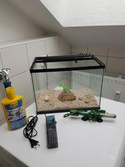 Verkaufe kleine Aquarium mit Zubehör