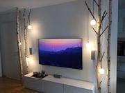 TV Möbel getrocknete Birkenstämme Birkenstamm