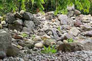 Steine zu verschenken