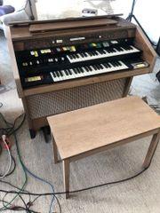 Hamond Orgel