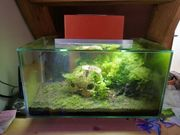 Fluval Aquarium 23Liter