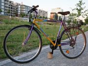 Fahrrad Treckingrad Stadtrad 21 Gänge