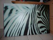 Tolles Bild Zebra Leinwand 118