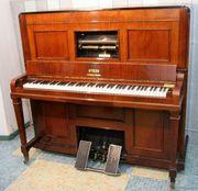 Steck Selbstspielautomat Pianola 138cm