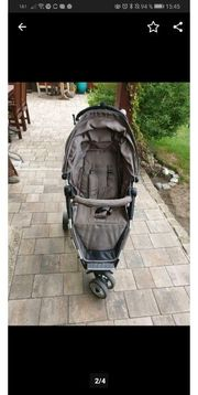 moon fit buggy