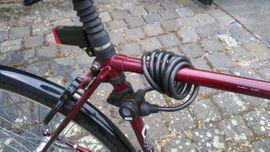 Bild 4 - 28 Herren Cityrad - Sandersdorf