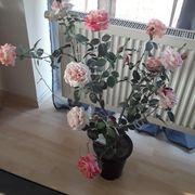 Kunst rosen