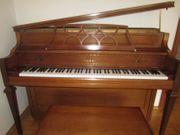 Klavier Kawei