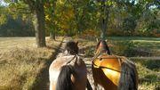 Ausflug mit Kutsche oder Kremser