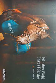 Horse-Set