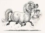 Suche Pony ab 100 cm