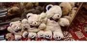 Teddybär Set