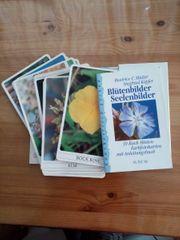 Blütenbilder Seelenbilder 39 Bach-Blüten-Farbfotokarten
