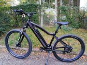 e bike fitifito 36v 250w
