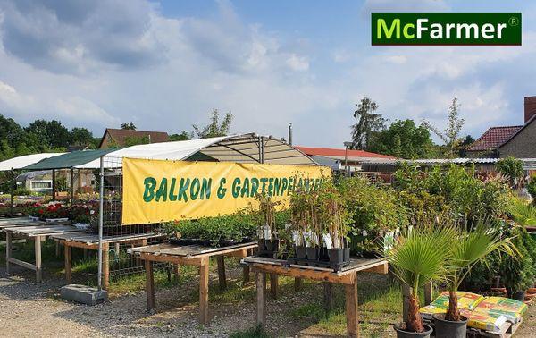4270m² Blumen Pflanzenverkaufsplatz in Forst