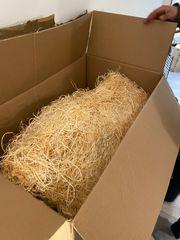 karton voll mit Holzwolle Stroh