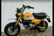 Honda Monkey 125 ABS sofort
