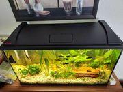 Aquarium Eheim Aquapro LED 126