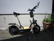Neuwertiger Premium E-Roller E-Scooter mit