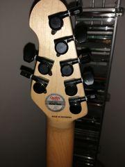 E- Gitarre