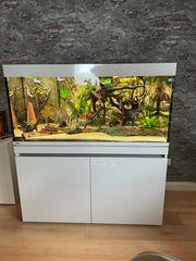 Aquarium Eheim Incpiria 430 L
