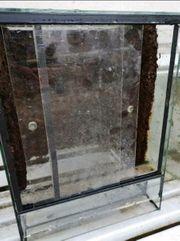 Glasterrarium