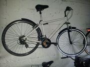 City Bike - Trekking Bike - Sportrad -