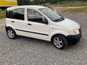 Fiat panda benzin sehr gefleckte