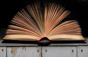 Lektorat Romane Kurzgeschichten Selfpublisher