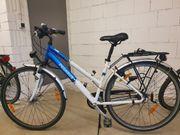 Damen Fahrrad Pegasus 26 Zoll