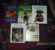 9 Hunde-Bücher sehr guter Zustand
